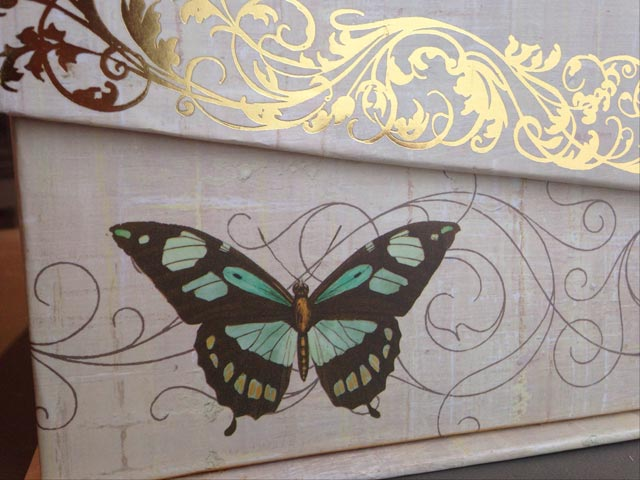 butterfly-inspiration