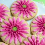 Gerbera-Daisy-SweetAmbs